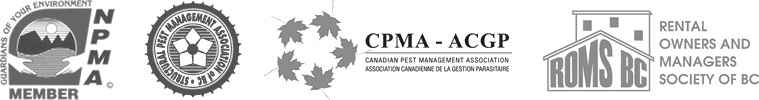victoria pest control and bed bugs control